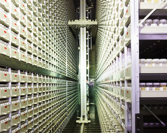 Seed storage facilities for the active collection (Jan 20, 2015)